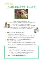 Pet_sod_2