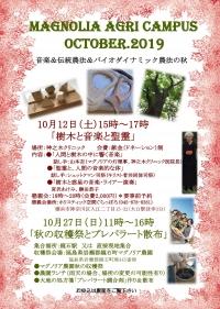 Magnoria1910_3_000001